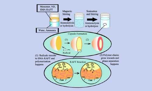 shop Plant Molecular Biology: Molecular Genetic Analysis of Plant Development and Metabolism